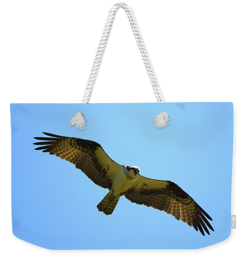 Weekender Tote Bag featuring the photograph In Coming by Tony Umana