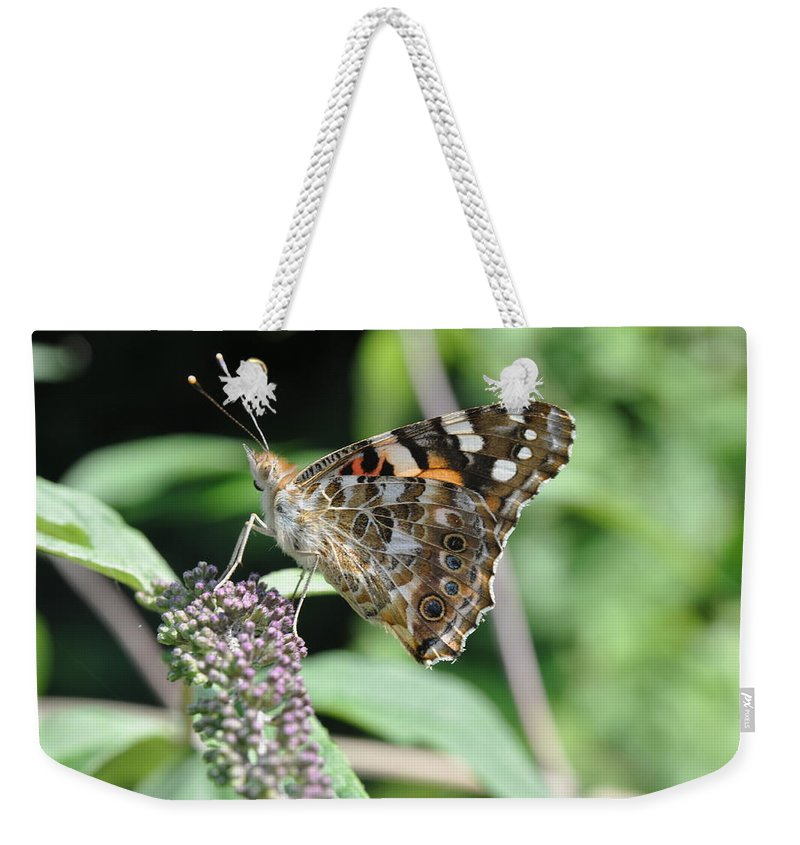 Butterfly Weekender Tote Bag featuring the photograph In Disguise by Eduard Meinema