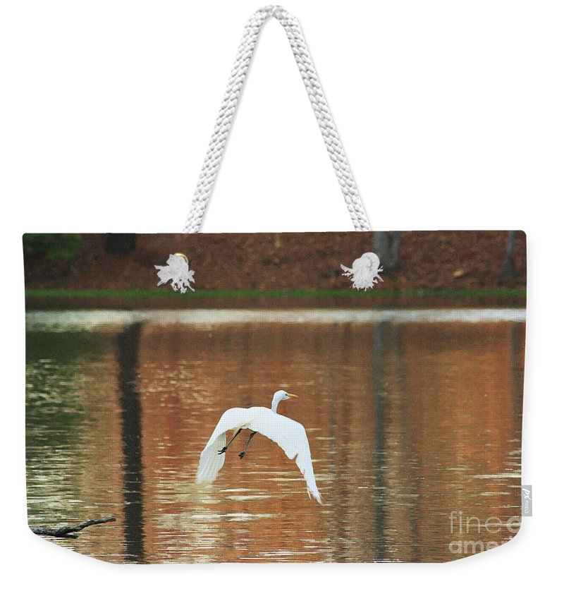 Heron Photograpy Weekender Tote Bag featuring the photograph In Flight by Kim Henderson