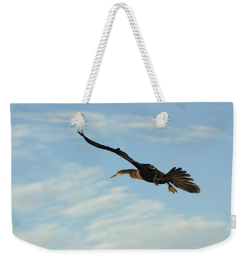 Birds Weekender Tote Bag featuring the photograph In Flight by Marty Koch
