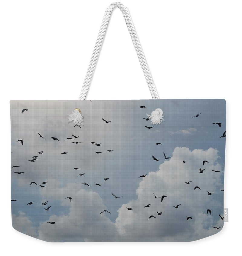 Birds Weekender Tote Bag featuring the photograph In Flight by Rob Hans