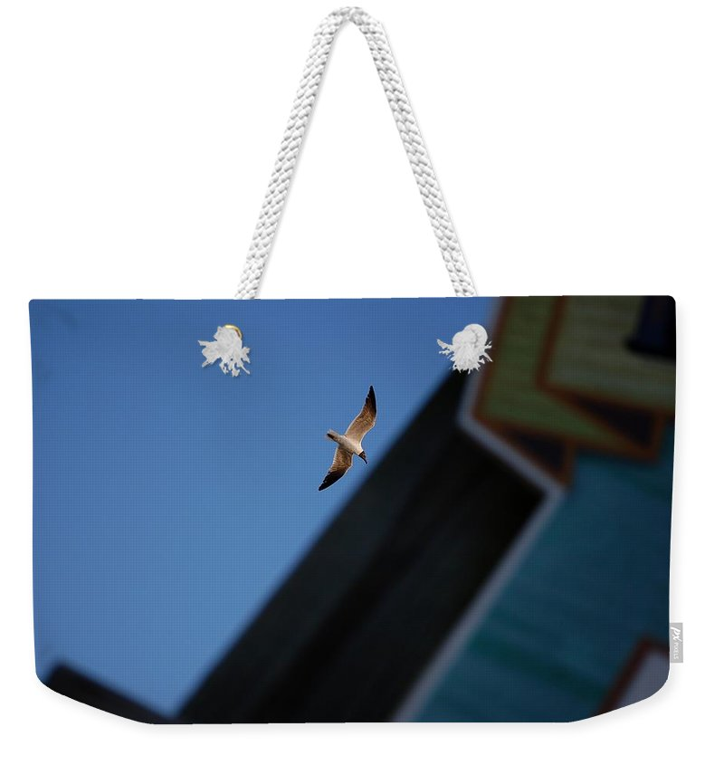 Seagull Weekender Tote Bag featuring the photograph In Flight by Robert Meanor