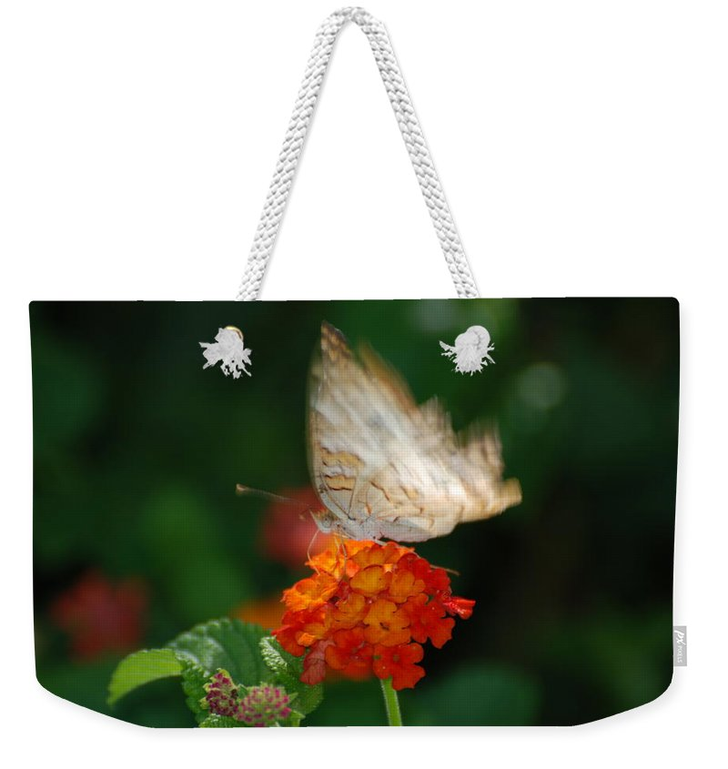 Butterfly Weekender Tote Bag featuring the photograph In Living Color by Rob Hans