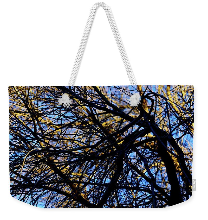 Botanical Weekender Tote Bag featuring the photograph In Sunlight And In Shadow by Bonnie See