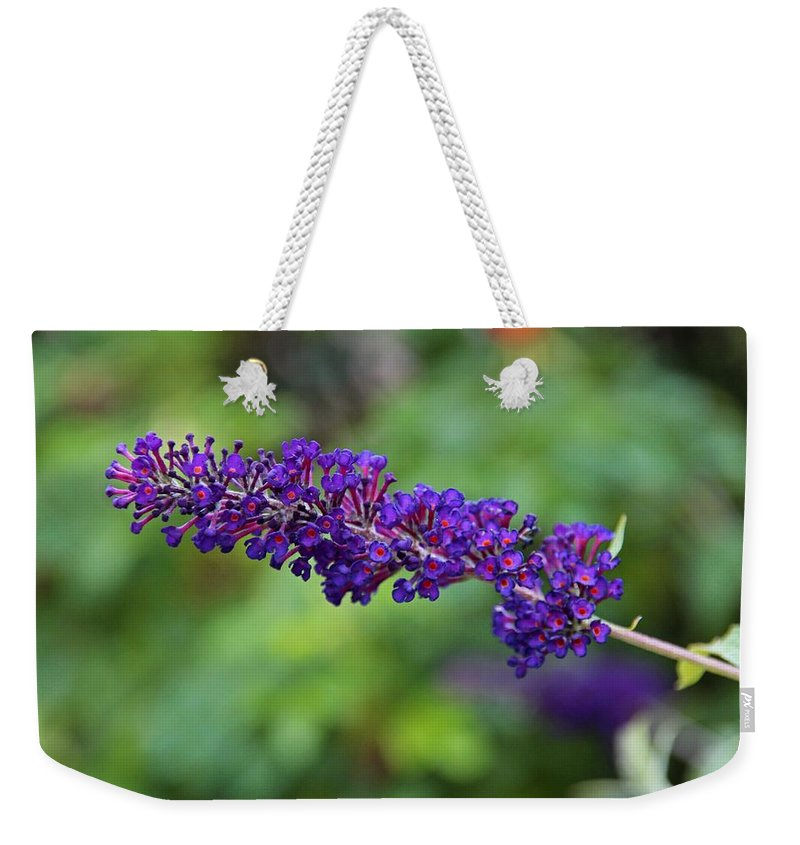 Butterfly Bush Weekender Tote Bag featuring the photograph In The Butterfly Garden by Michiale Schneider