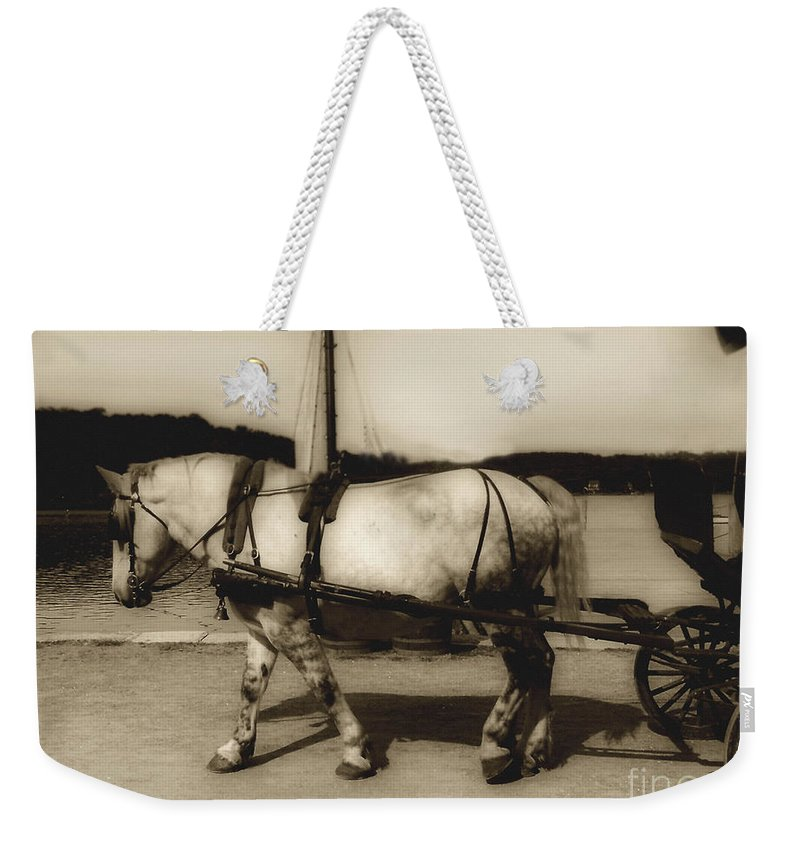 Horse Weekender Tote Bag featuring the photograph In The Cool Of The Evening by RC DeWinter