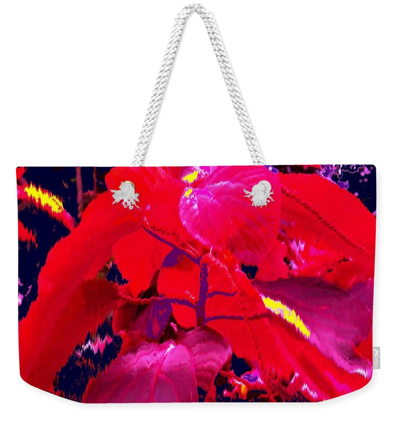 Abstract Weekender Tote Bag featuring the photograph In The Jungle by Ian MacDonald