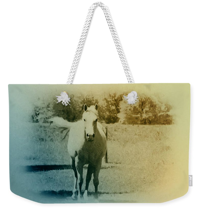Horses Weekender Tote Bag featuring the photograph In The Meadow by Bill Cannon