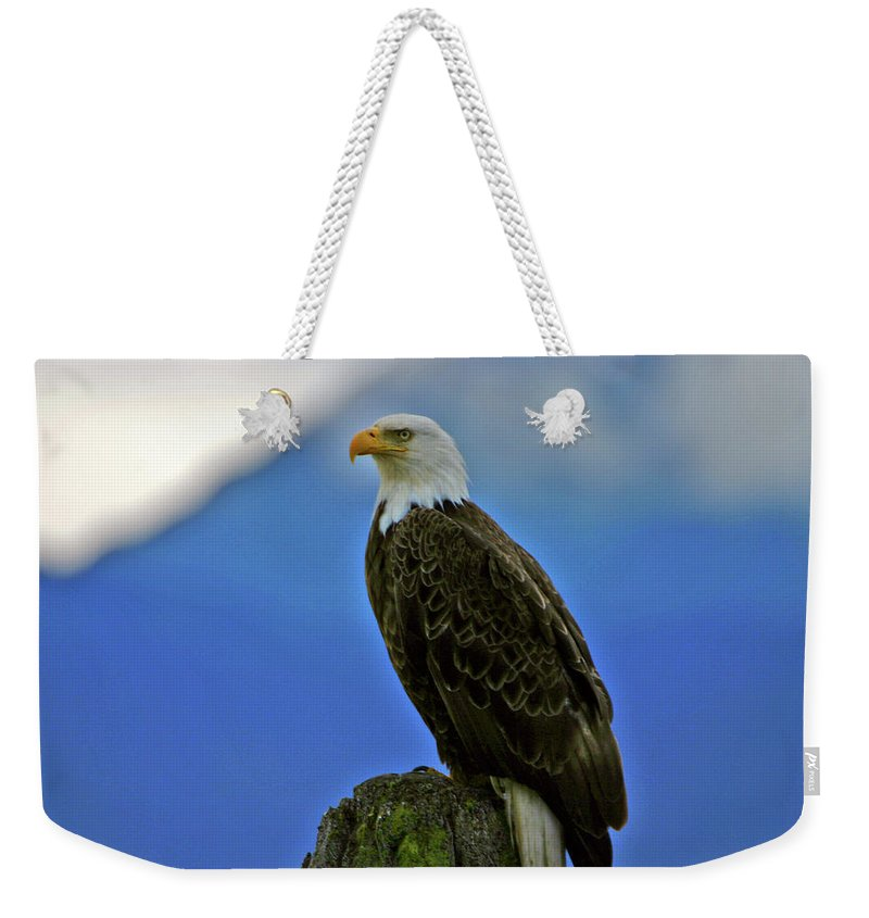 Moment Weekender Tote Bag featuring the photograph In The Moment by Scott Mahon