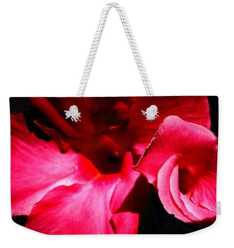 Flowers Weekender Tote Bag featuring the photograph In The Pink 1 by Nelson F Martinez