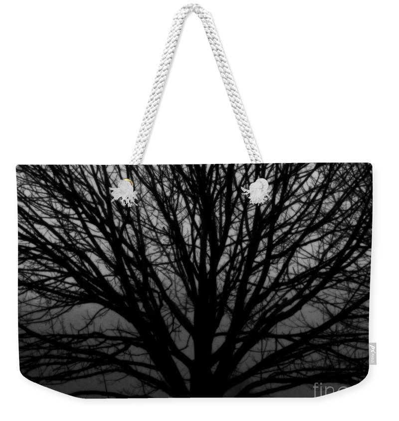 Still Life Weekender Tote Bag featuring the photograph In Reach Of Mist by Rick Maxwell