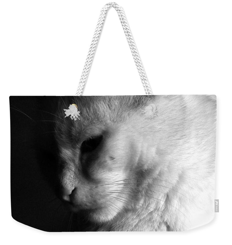 Nature Weekender Tote Bag featuring the photograph In The Shadows by Bob Orsillo