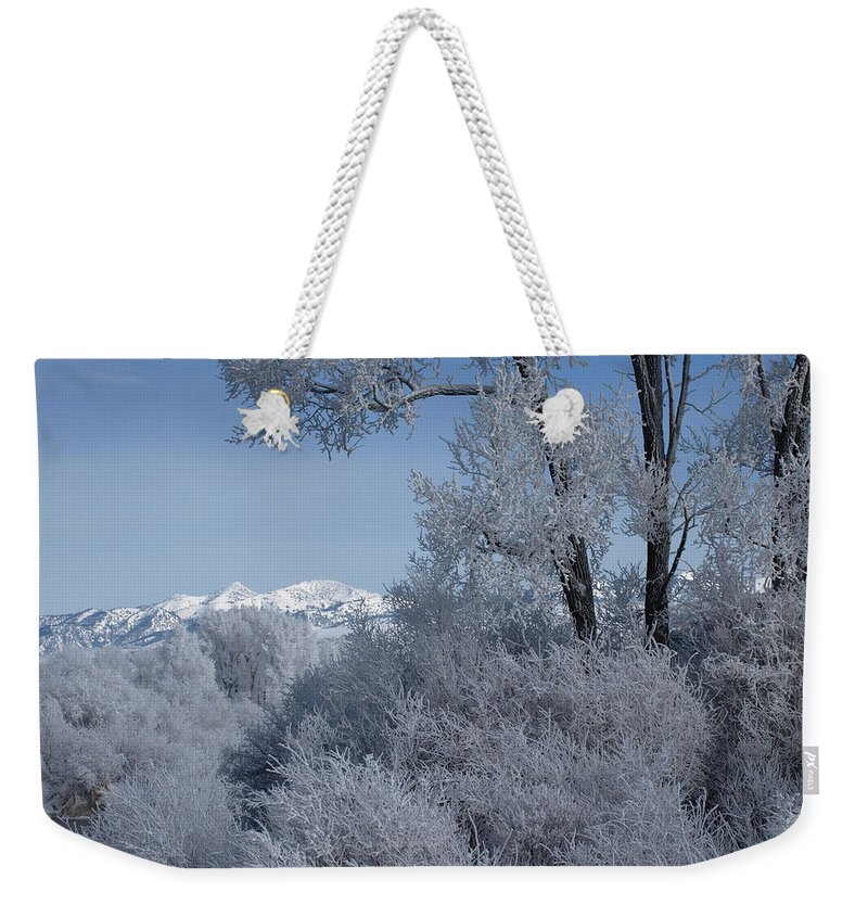 Fog Weekender Tote Bag featuring the photograph In The Shadows Of The Fog by DeeLon Merritt