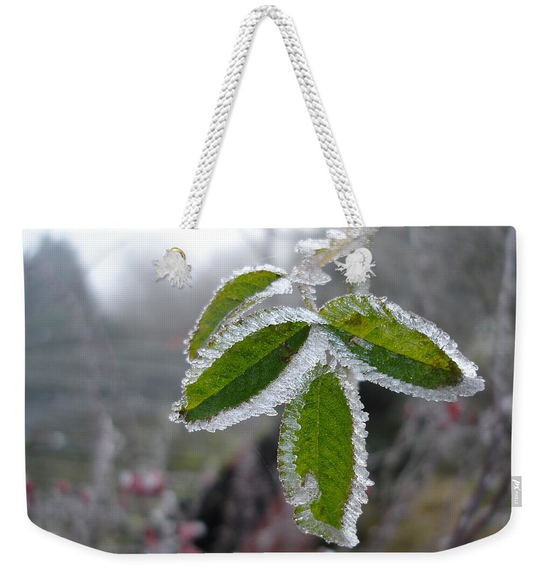 Winter Weekender Tote Bag featuring the photograph In The Winter Sunlight by Susan Baker