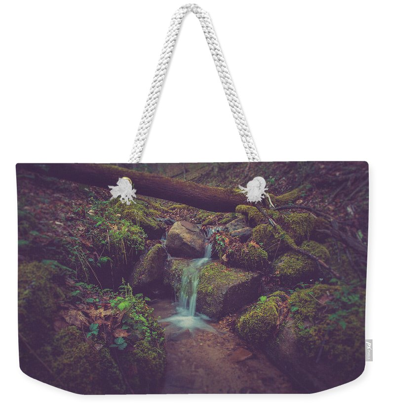 Woods Weekender Tote Bag featuring the photograph In The Woods by Shane Holsclaw