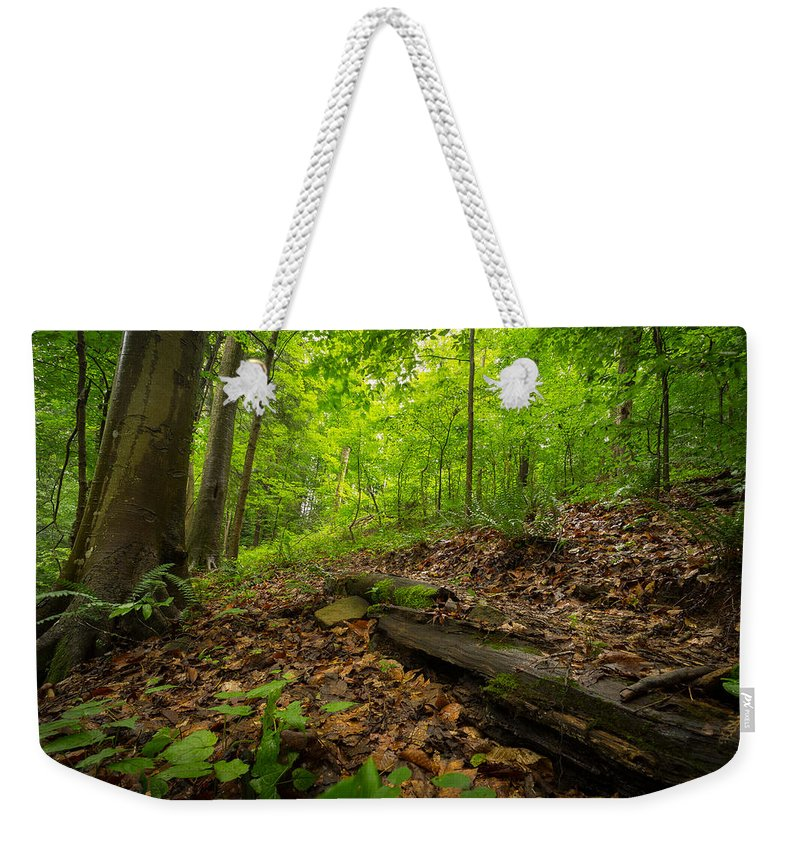 Woods Weekender Tote Bag featuring the photograph In The Woods_2 by Shane Holsclaw
