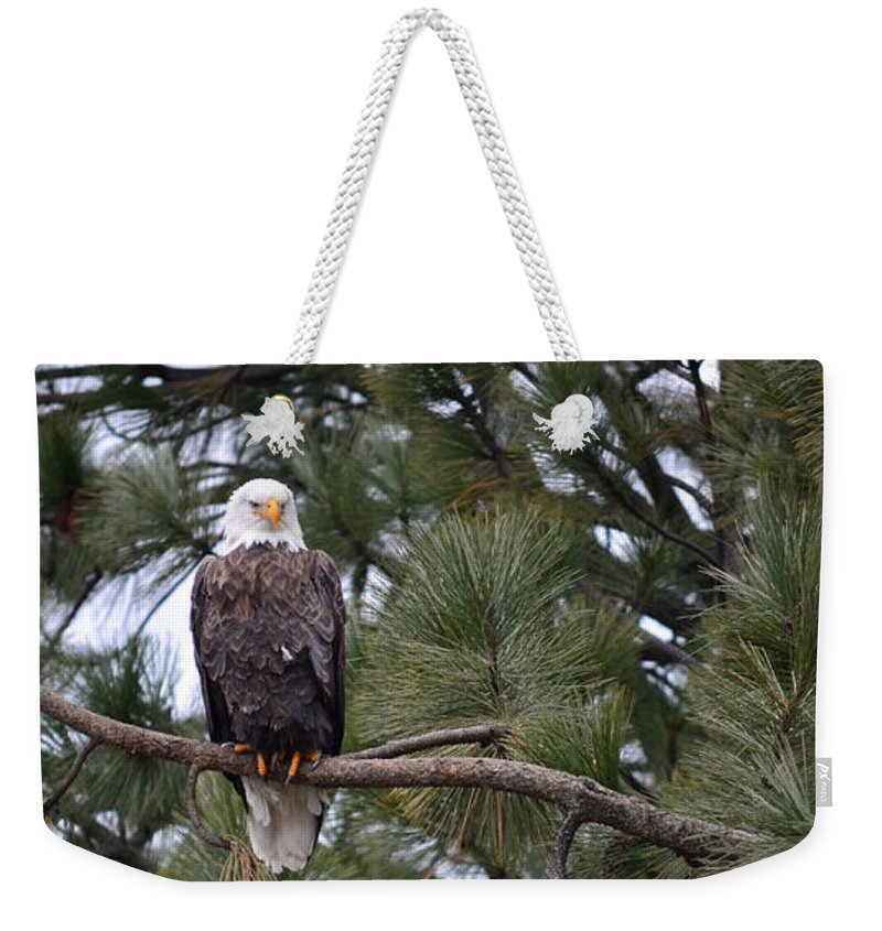 Art For The Wall...patzer Photography Weekender Tote Bag featuring the photograph In Time by Greg Patzer