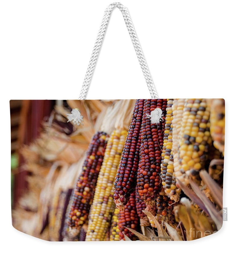 Weekender Tote Bag featuring the photograph Indian Corn 6 by Andrea Anderegg