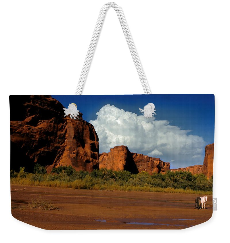 Horses Weekender Tote Bag featuring the photograph Indian Ponies In The Canyon by Jerry McElroy
