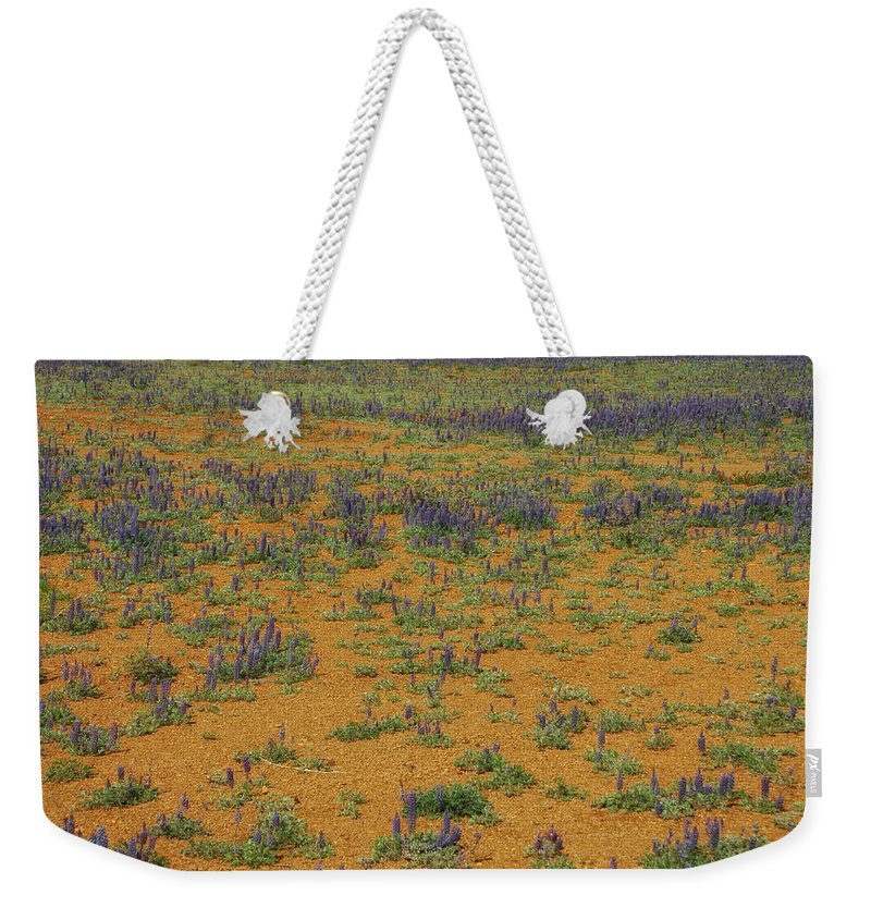 Flowers Weekender Tote Bag featuring the photograph Infinity by Donna Blackhall