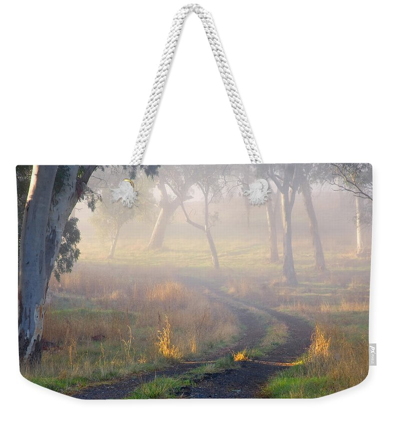 Mist Weekender Tote Bag featuring the photograph Into The Mist by Mike Dawson