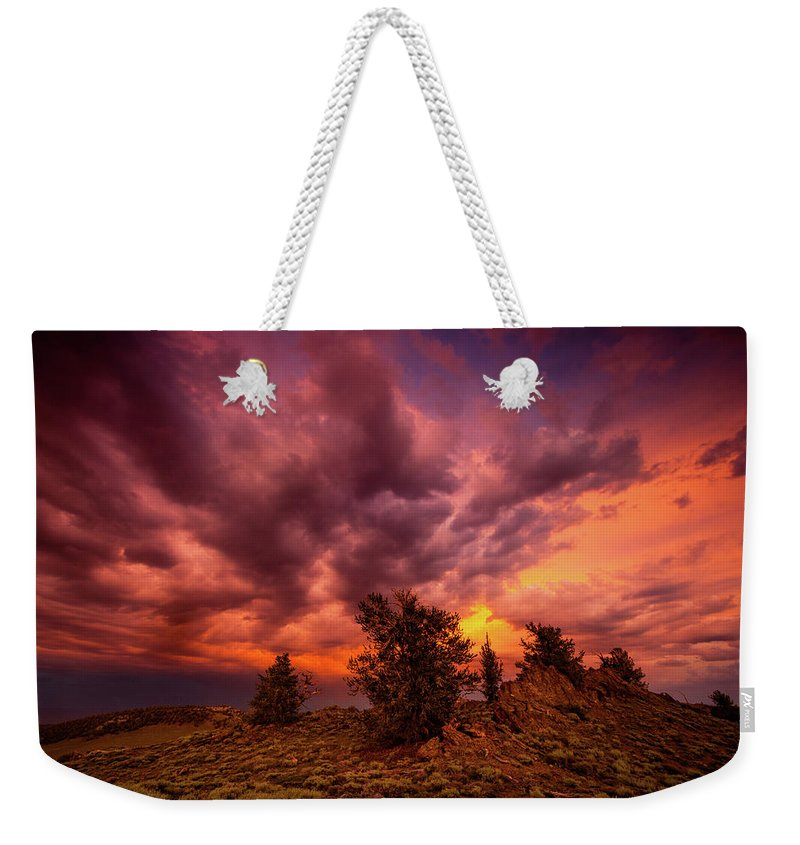 California Weekender Tote Bag featuring the photograph Into The Storm by Dan Holmes