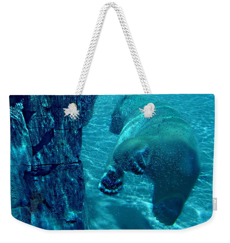 Weekender Tote Bag featuring the photograph Into The Wild Blue by Steve Karol