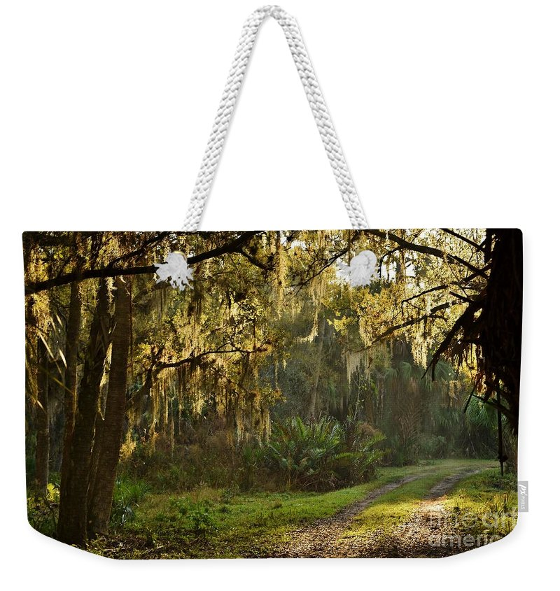 Into The Woods Weekender Tote Bag featuring the photograph Into The Woods by Lisa Renee Ludlum