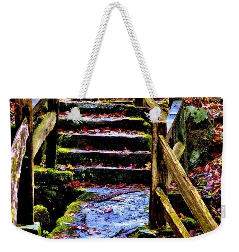 Intuition Weekender Tote Bag featuring the photograph Intuition by Lisa Renee Ludlum