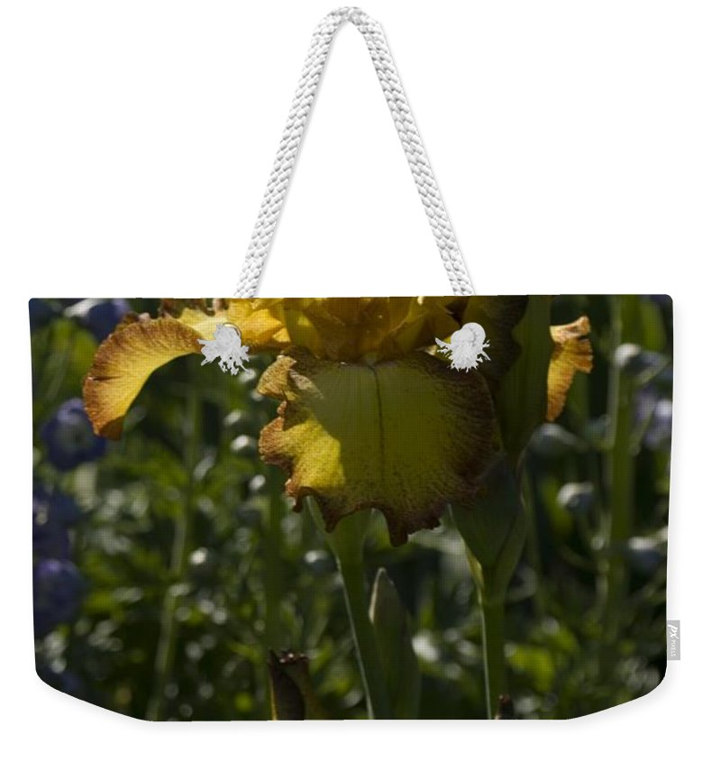 Iris Weekender Tote Bag featuring the photograph Iris 6 by Sara Stevenson