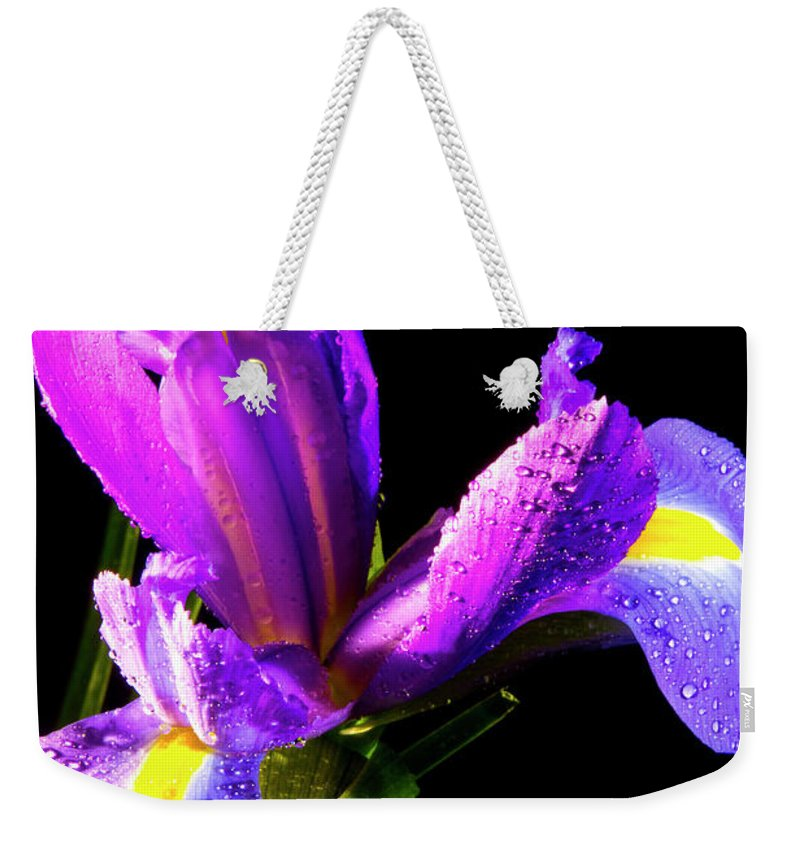 Color Weekender Tote Bag featuring the photograph Iris Bloom One by Frederic A Reinecke
