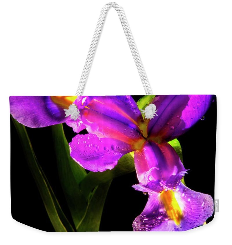 Color Weekender Tote Bag featuring the photograph Iris Bloom Two by Frederic A Reinecke