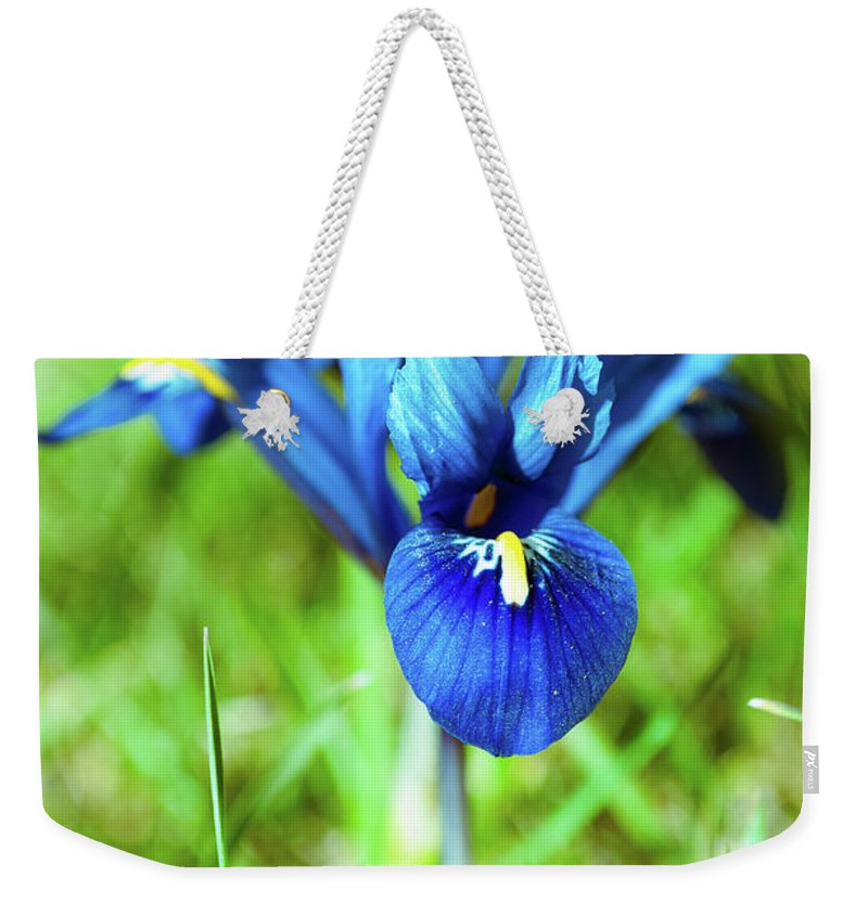 Flowers Weekender Tote Bag featuring the photograph Iris by Ewelina Pop