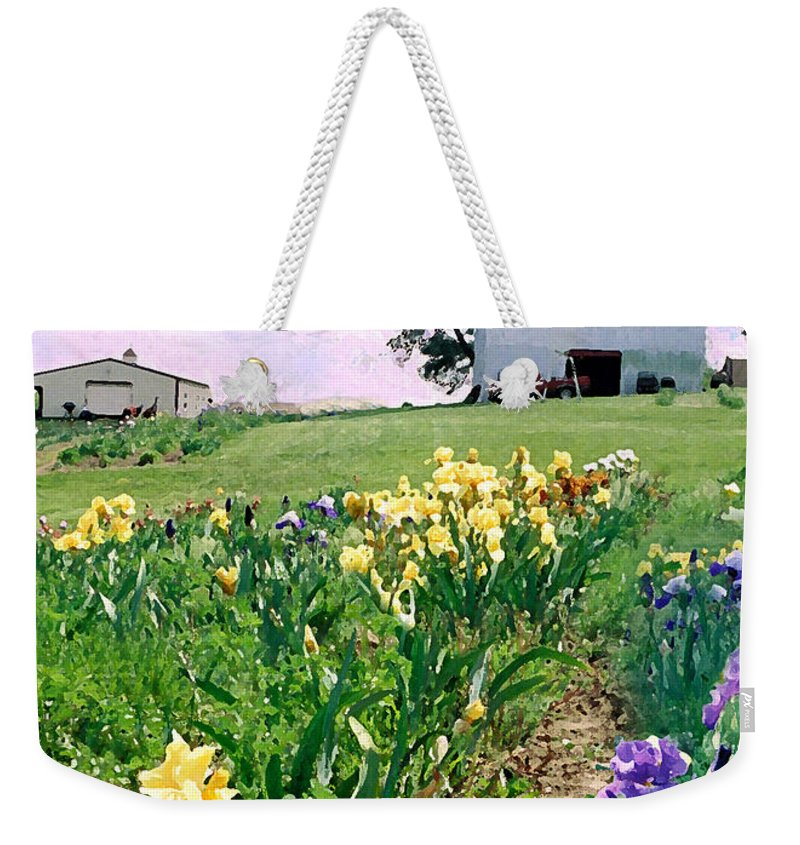 Landscape Painting Weekender Tote Bag featuring the photograph Iris Farm by Steve Karol