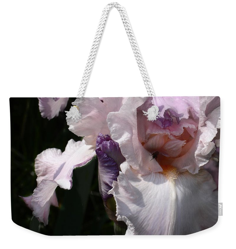 Flower Weekender Tote Bag featuring the photograph Iris Lace by Steve Karol