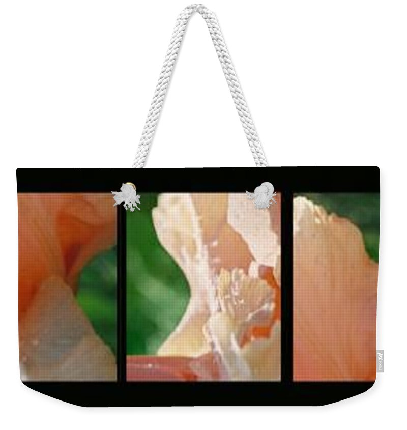 Abstract Weekender Tote Bag featuring the photograph Iris by Steve Karol