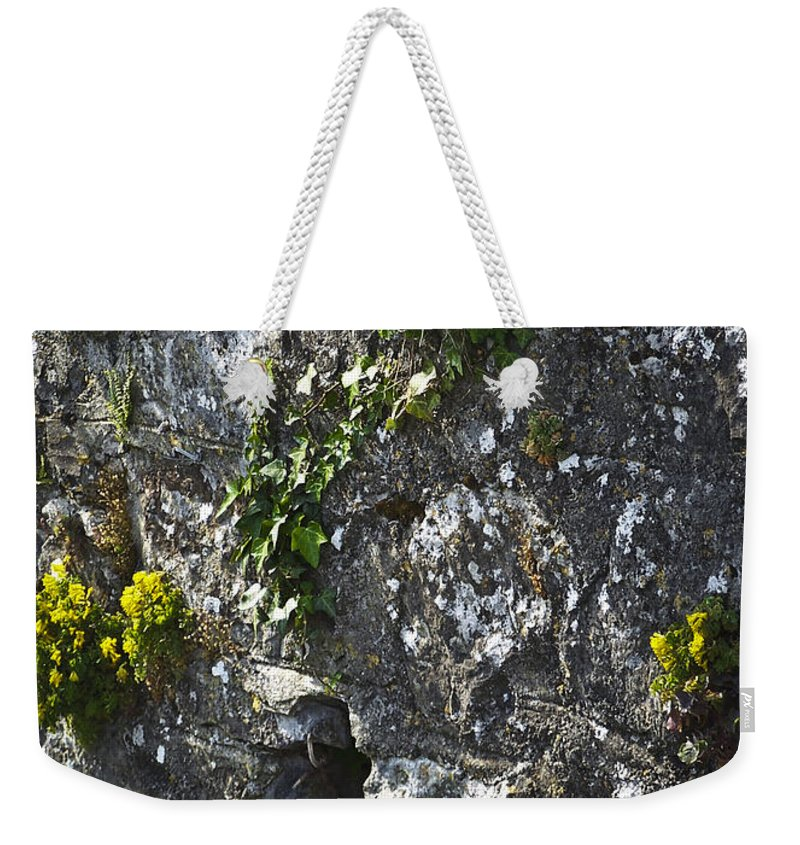 Ireland Weekender Tote Bag featuring the photograph Irish Stone Flowers by Teresa Mucha
