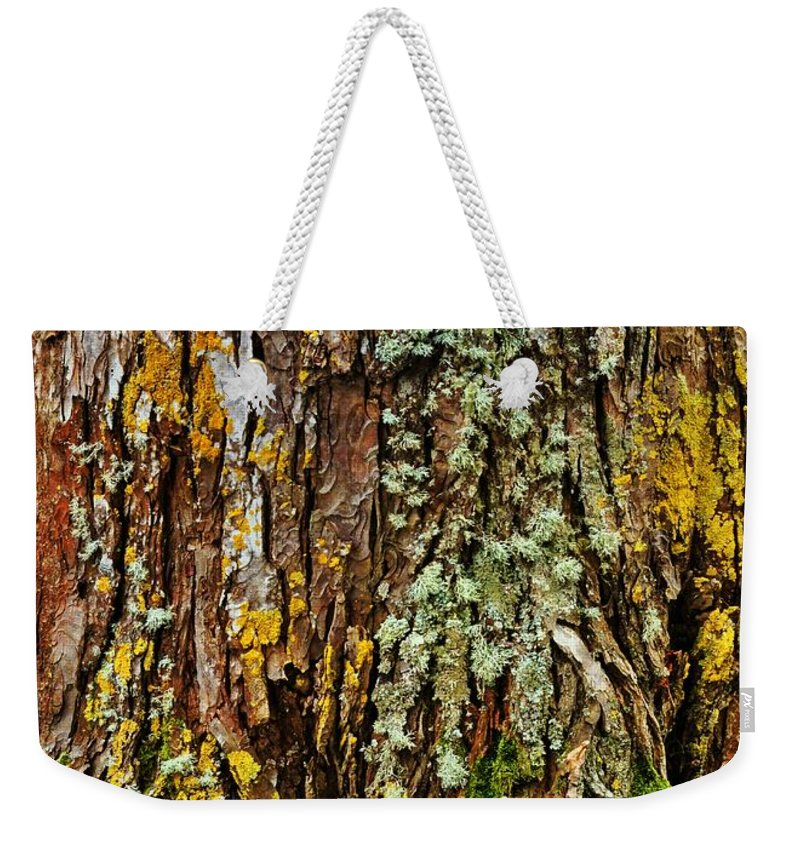 Tree Weekender Tote Bag featuring the photograph Island Moss by JAMART Photography