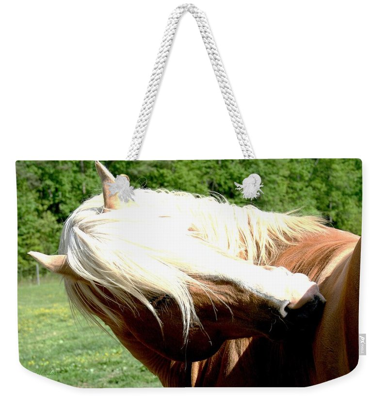Horse Weekender Tote Bag featuring the photograph Itchy Spot by Tina Meador