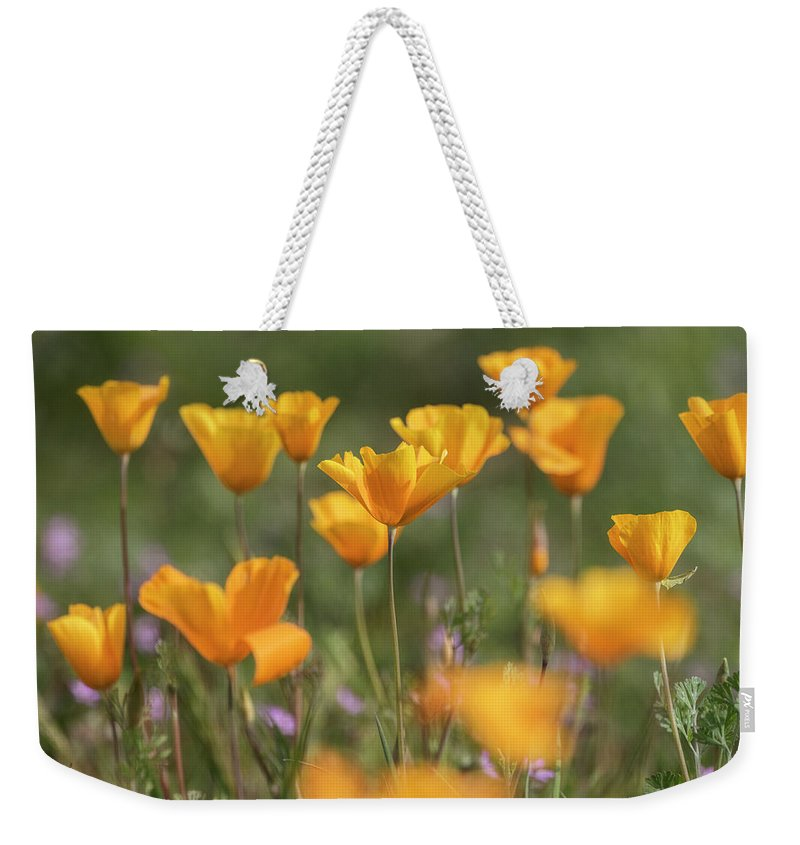 Poppies Weekender Tote Bag featuring the photograph It's A Poppy Thing by Saija Lehtonen