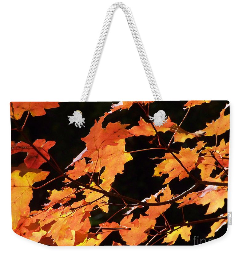 Creeks Weekender Tote Bag featuring the photograph It's Fall by Kathy McClure