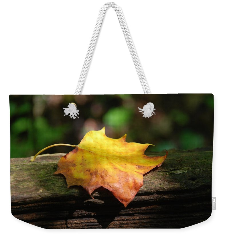 Photography Weekender Tote Bag featuring the photograph Its Fall by Susanne Van Hulst
