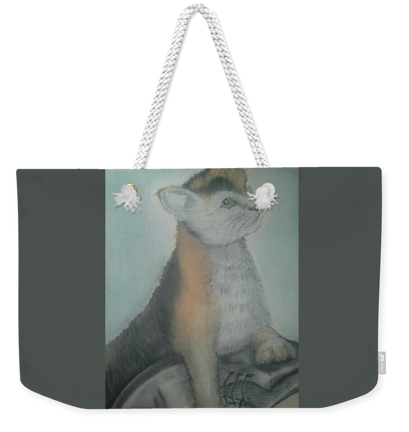 Cat Weekender Tote Bag featuring the drawing Its Mine by Alan Kennedy
