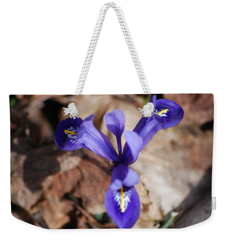 Digital Photography Weekender Tote Bag featuring the photograph It's Spring 2010 by David Lane