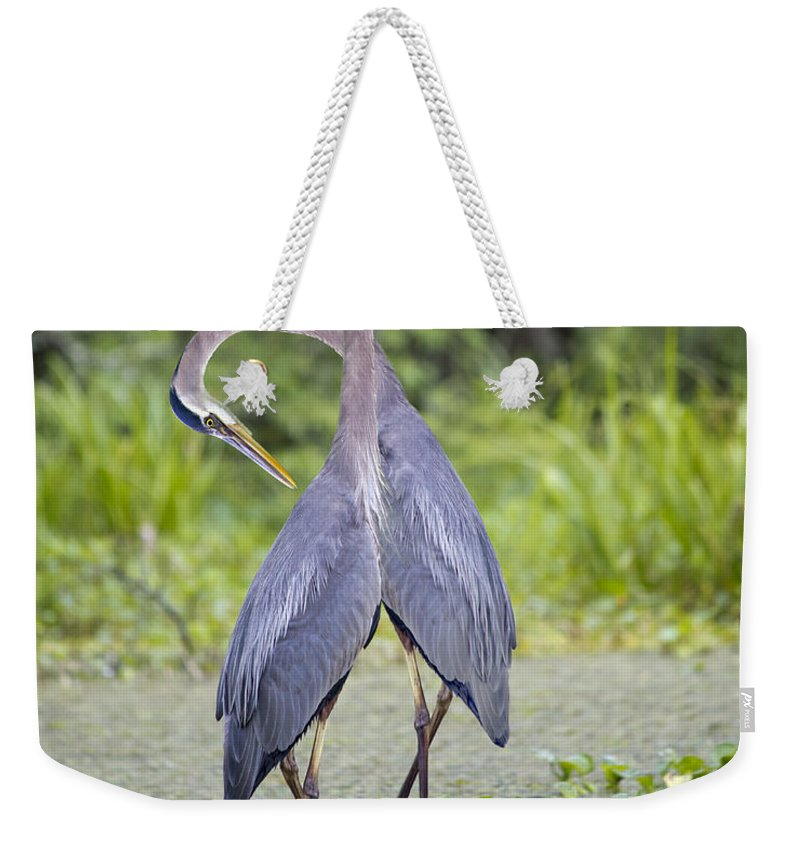 Breaux Weekender Tote Bag featuring the photograph I've Got Your Back by Betsy Knapp