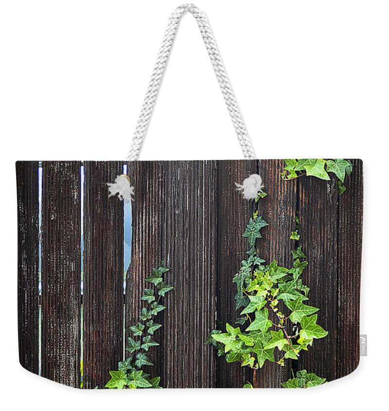 Clay Weekender Tote Bag featuring the photograph Ivy On Fence by Clayton Bruster