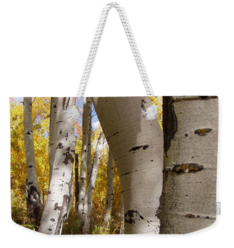Trees Weekender Tote Bag featuring the photograph Jackson Hole Wyoming by Amanda Barcon