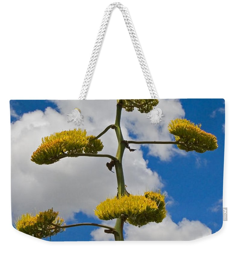 Blue Weekender Tote Bag featuring the photograph Jacobs Ladder by Skip Hunt