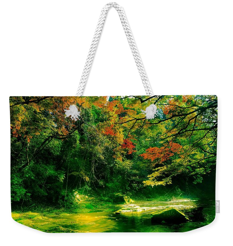 Japan Weekender Tote Bag featuring the photograph Japan by FL collection