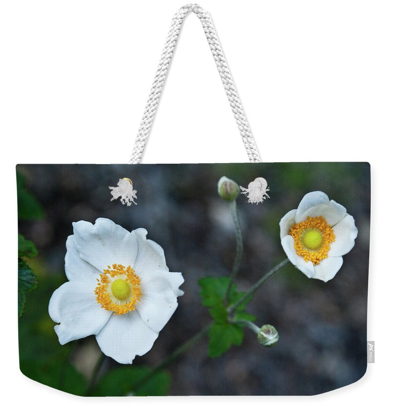 Japanese Weekender Tote Bag featuring the photograph Japanaese Anemone by Douglas Barnett